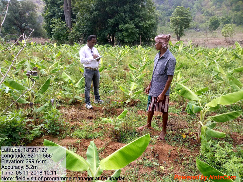 During field visits to Chitapari village meeting with SHG on promotion of Hill broom value addition, and interaction with banana farmer 16.jpe